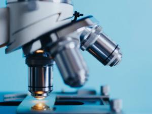 Die Mikroskopische Untersuchung